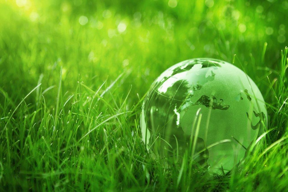 رشته محیط زیست