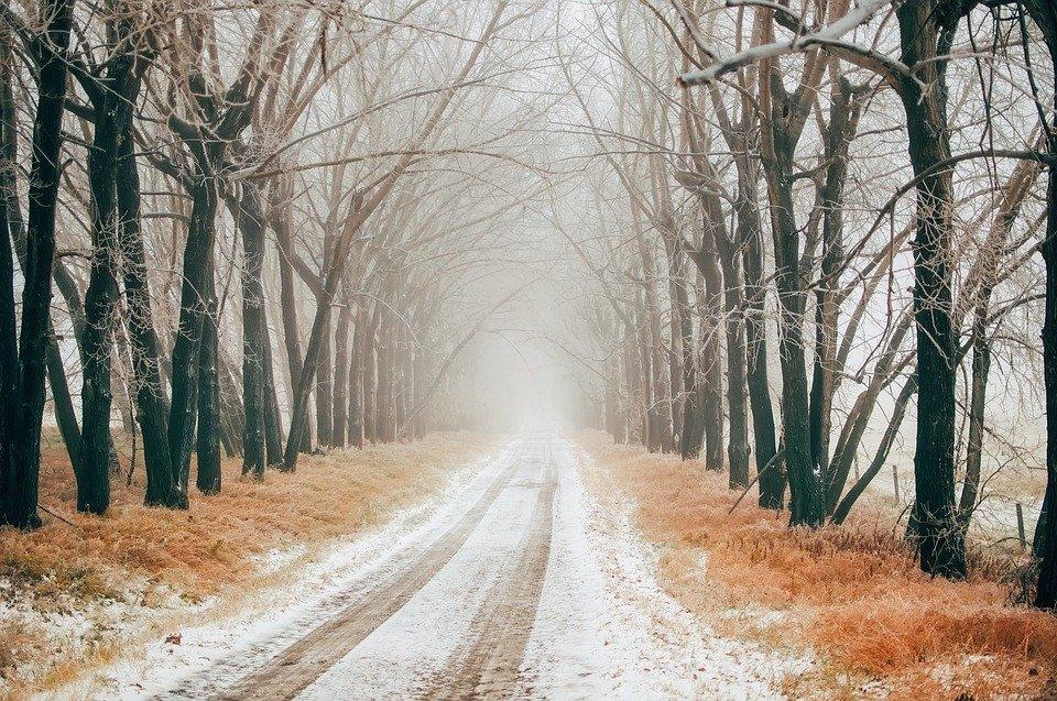 زمستان در کانادا