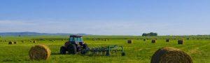 برنامه کشاورزان خوداشتغال آلبرتا